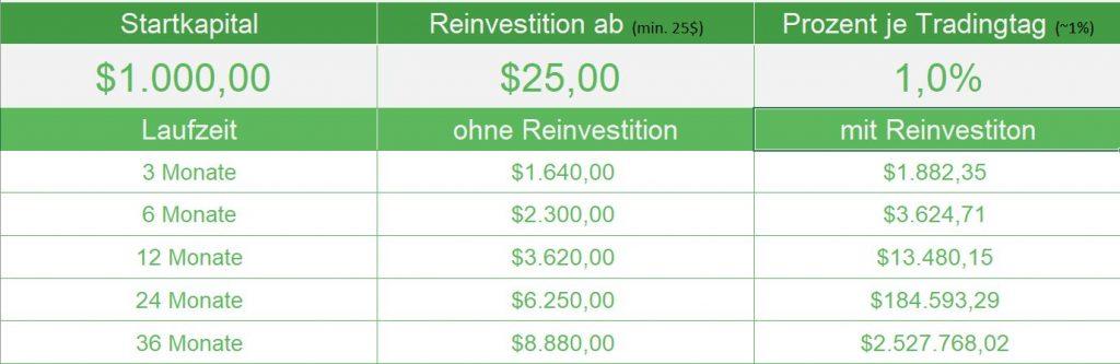 Biznet Rechner - Einkommensrechner für Biznet.pw Biznet-Rechner